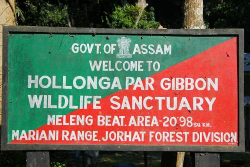 Hollongapar Gibbon Wildlife Sanctuary