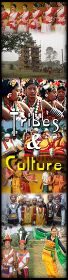 Assamese tribes and culture